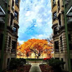 Econ Building @bostonu by milooooo_hu