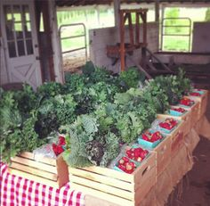 CSA crates at working hands farm