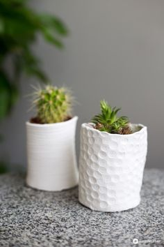 DIY Ideen aus Modelliermasse: DIY mini Vasen für Sukkulenten und Kakteen ganz einfach selbermachen - Super süß auch als kleines Mitbringsel!