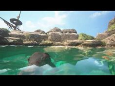 Uncharted 4: A Thief's End ´- Water and underwater graphics - YouTube
