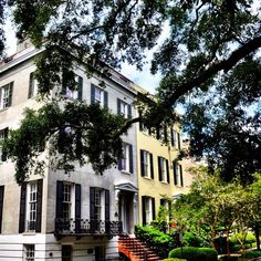 Historic Savannah, GA homes…