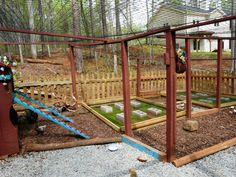 http://www.backyardchickens.com/forum/uploads/67374_chicken_run_225.jpg