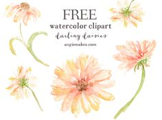 Free Watercolor Clip Art Daisies for Non Commercial Use. Enjoy This Free Watercolor Clip Art Courtesy of Angie Makes. Share with a Friend!