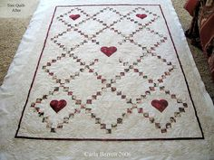 I like everything about this quilt