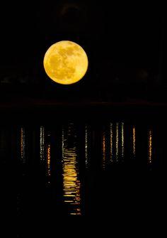 ✯ Golden Moon