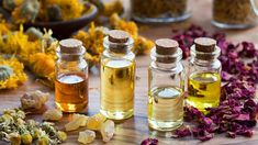 Essential Oil Recipes With Musk Fragrance. Essential oils are a natural, safe way to enjoy this sensual, woody, exotic, oriental fragrance. Essential Oils For Fertility, Are Essential Oils Safe, Essential Oil Uses, Eucalyptus Citronné, Eucalyptus Globulus, Emma Stone, Camomille Romaine, Cellulite Oil, Musk Oil
