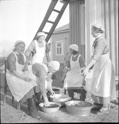 Lottas peeling potatoes. Lotat kuorivat perunoita Heinjoen Sk:n talon nurkalla.  Heinjoki 1939.10.01. SA-kuva.