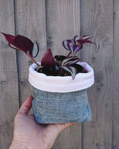 Storage Pods, Fabric Storage Baskets, Little Plants, Plant Holders, Basket Weaving, Cute Gifts, Handmade, Crafts, Etsy