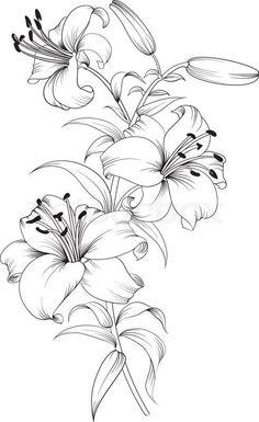 Simple Flower Drawing, Flower Art Drawing, Pencil Drawings Of Flowers, Flower Sketches, Floral Drawing, Pencil Art Drawings, Art Drawings Sketches, Tattoo Drawings, Painting Tattoo