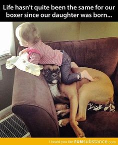 Adorable . dog baby man's best friend family pet