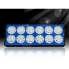 Buy Full Spectrum Apollo 12 Grow LED Lights For Growing Medical Cannabis Plant, The red wavelength for plants budding and blossoming and fruiting,blue wavelength for plants photosynthesis and keep growing steadily. Grow Lamps, Shield Design, Cannabis Plant, Led Grow Lights, Photosynthesis, Medical Cannabis, Spectrum, Apollo, South Africa