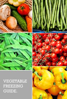 Vegetable Freezing Guide. How to prepare, blanch and freeze veggies.