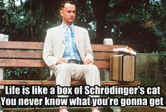 Google+ Aaron Wood  Forrest Gump vs. Schrodinger