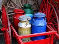 Colored Milk Jugs