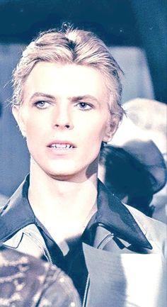 David Bowie Starman, David Bowie Ziggy, David Bowie Tribute, Iggy Pop, Mick Jagger, David Bowie Fashion, Bowie Heroes, Brian Duffy, Bowie Ziggy Stardust