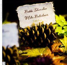 Escort Cards in pinecones