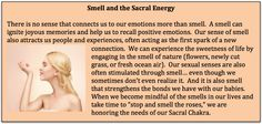 Smell & Sacral Energy