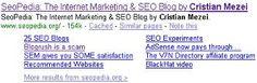 nice Google Sitelinks: The Final FAQ