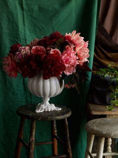 #martynthompsonstudio #martynthompson flowers #photography