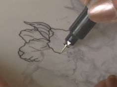 How to do a botanical watercolor painting. Take photos, develop a sketch, ink…