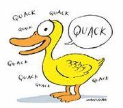 Lol I'm a duck