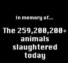 PLEASE HELP reduce the number of lives killed by going VEGAN