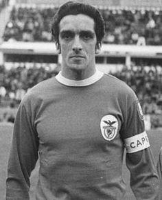 José Torres de nome completo José Augusto da Costa Sénica Torres foi um antigo jogador de futebol da selecção portuguesa. Jogava na posição de avançado e tinha a alcunha de O Bom Gigante.