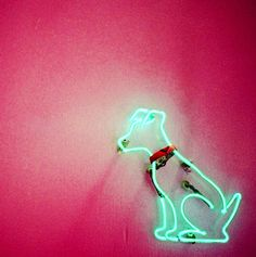Green neon dog -- anyone know the source?
