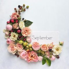 "Hello September 🍂, if you live in New England you know September always feels like a fresh start, like a "" new year "" kinda sort of ( 😌). Seasons Months, Days And Months, Seasons Of The Year, Months In A Year, Flower Frame, Flower Art, Hello September, September Born, Calendar Girls"