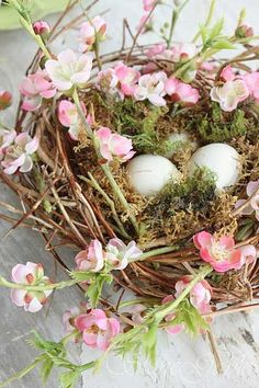 Beautiful Nest
