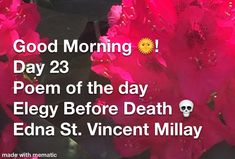 Poem A Day, Asmr, Mother Nature, Good Morning, Poems, Death, Good Day, Autonomous Sensory Meridian Response, Bonjour