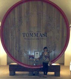 Magnifica Oak Cask in Tommasi Old Cellar www.tommasi.com