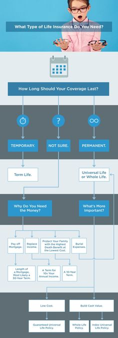 life insurance types flow chart