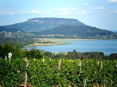 Badacsony Wine Country, Hungary, Budapest, Beautiful Places, Marvel, River, Mountains, Nature, Pictures