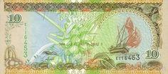 10-Rufiyaa-Note-Of-Maldives.jpg (470×211)
