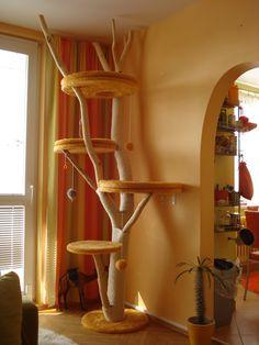 Škrabadlo, neboli strom pro kočky :: Kočka Rozmálka
