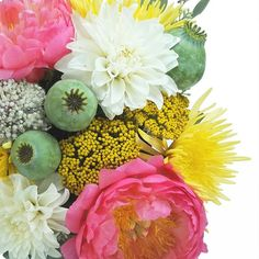 Ooh la la! This week's bouquet features Dahlias, Coral Peonies, Poppy Pods, and Spider Mums. #stemandbloom #flowers