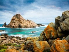 Here sits Sugarloaf Rock jutting out from the craggy Indian Ocean coastline with its stunning views and rare bird-watching. Take a look!