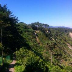 #Green and #blue #Asturias
