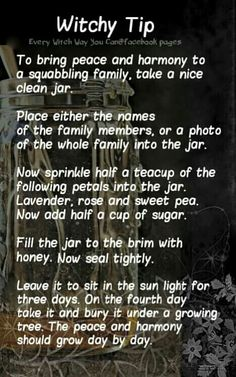 Witchy tip - how to bring peace and harmony to a squabbling family Wiccan Witch, Magick Spells, Witchcraft, Healing Spells, White Witch Spells, Blood Magick, Hoodoo Spells, Paranormal, Every Witch Way