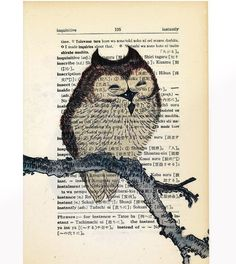 'Owl on Branch' on Antique Japanese Dictionary ' by Kiintage