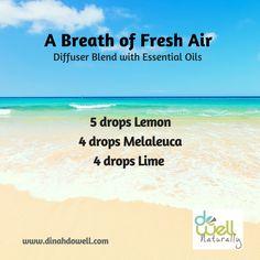 A Breath of Fresh Ai