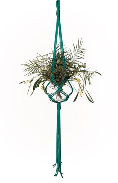 macrame plant hanger, hanging basket, pot hanger, hanging planter, plant holder, macrame  - The Beverley