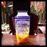 Como levar papinha congelada em viagens | Macetes de Mãe