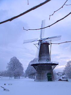 Molen van Hulst;  Dutch Windmill