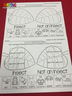 https://www.teacherspayteachers.com/Product/Insects-Print-Play-Pack-1829415 Science Classroom, Kinder Science, Preschool Science, Teaching Science, Classroom Activities, Science For Kids, Science Resources, Life Science, Classroom Fun