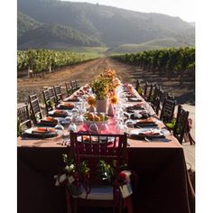 Vineyard Reception Tables out in the open vineyard fields #vineyard #wedding #winery