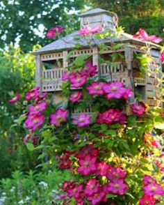 Links to a web page with a perfect cottage garden. Clematis on birdhouse. I don't know the name of this Clematis variety. Dream Garden, Garden Art, Garden Plants, Garden Design, Home And Garden, Beautiful Gardens, Beautiful Flowers, Beautiful Gorgeous, Stunning Summer