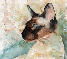 cat paintings by rachel parker | Siamese_Watercolor_Pictures_by_Rachel_Parker_11.jpg