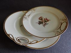 "Set of 3 - 1880's Charles Haviland & Co. Limoges ""Moss Rose"" Pattern Dinner/Serving Plates"
